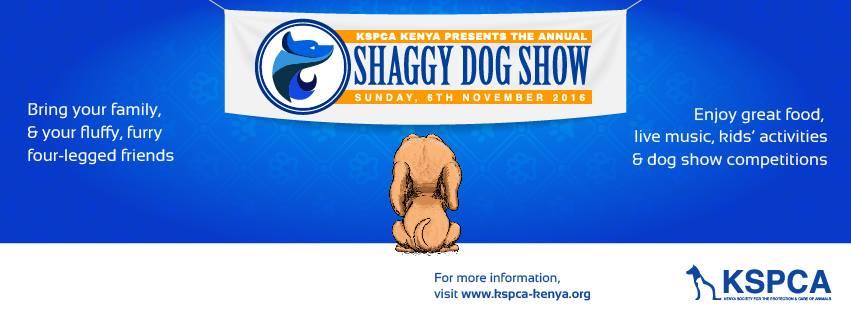 shaggy-dog-show-2016
